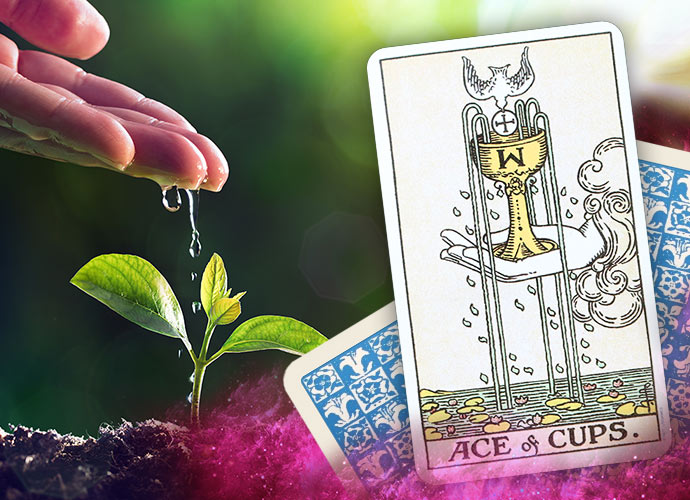 The Ace of Cups Tarot Card